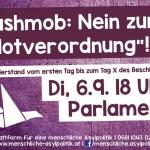 Flyer für FlashMog gegen Notverordnung